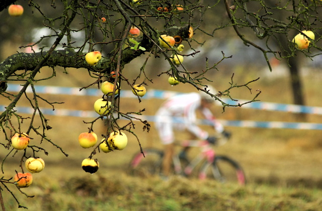Jablka v cyklistice