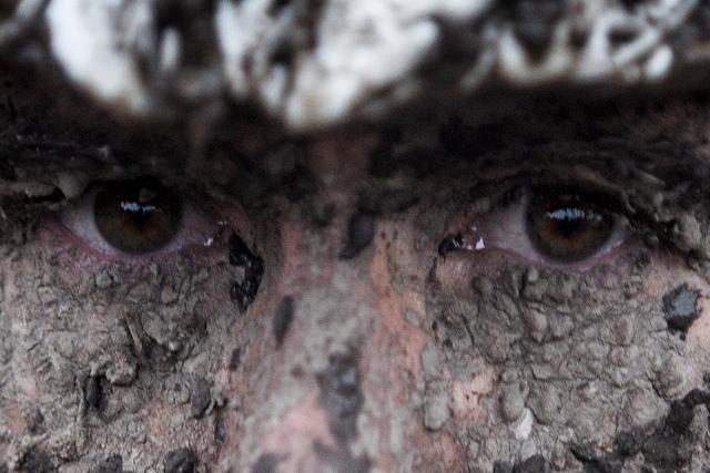 Oči oči oči!