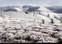 Trail-Busters kalendář 2015