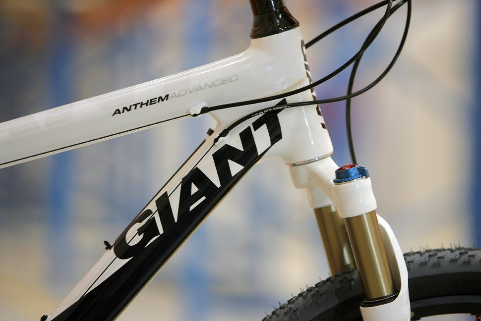 Giant Anthem Advanced 0