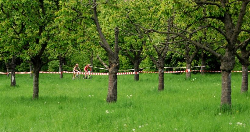 Český pohár XC Teplice, 8.5.2008 - Adel a Cink v druhém kole