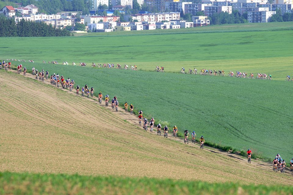 Kr�l �umavy 2008