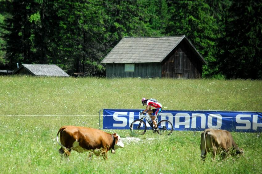 MS Maraton 2008 - Villabassa /ITA/
