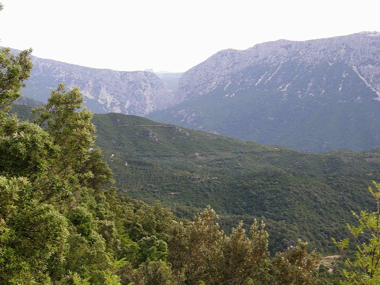 Rally di Sardegna - po z�vod�, 7.-14.6. 2008, Sard�nie/ITA, foto: Bob Damek