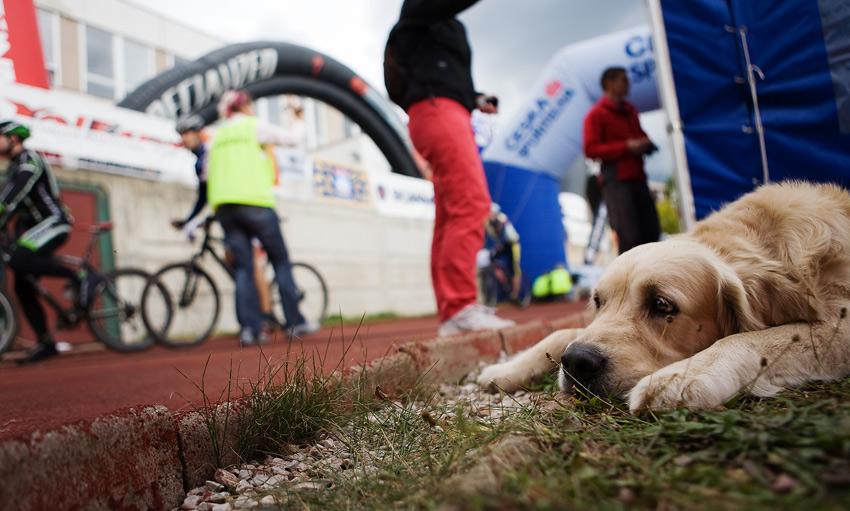 Kolo pro �ivot 2008 - Trutnovsk� 50 /foto: Milo� Lubas/
