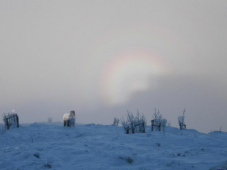 Inverze v Beskydech na Lys� Ho�e, foto: Bob Damek