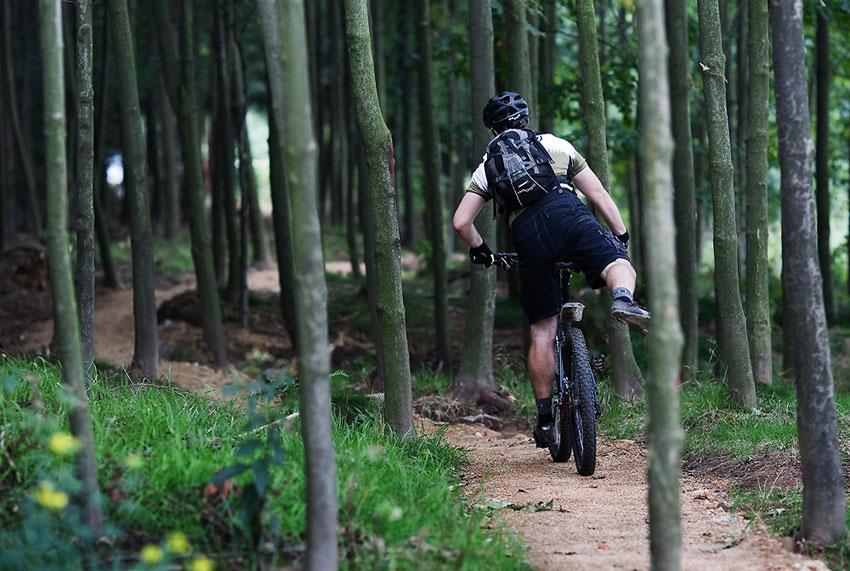 ČeMBA Singltrek pod Smrkem 2009 - úsek trailu v osikovém háji