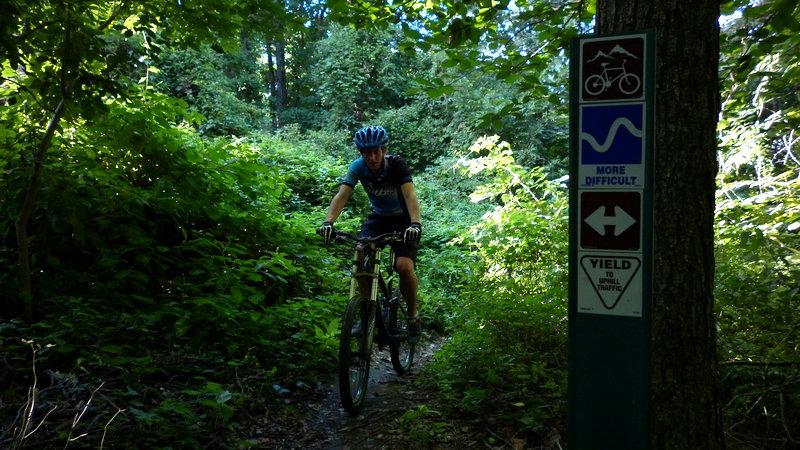 Trail v Highbridge Parku