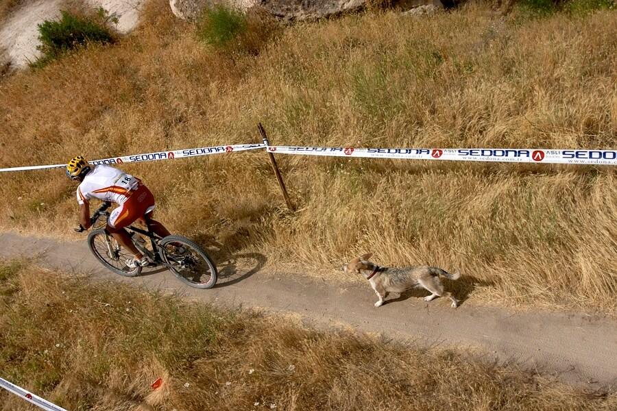 ME Cappadocia 2007 - závod mužů 15.7. - psi a vůbec domácí zvířata byla někdy velkým problémem