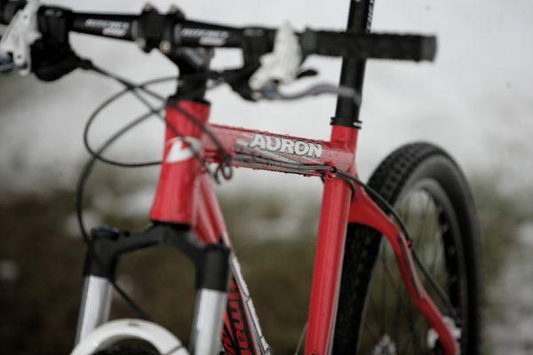 Dema Auron 2009 preview