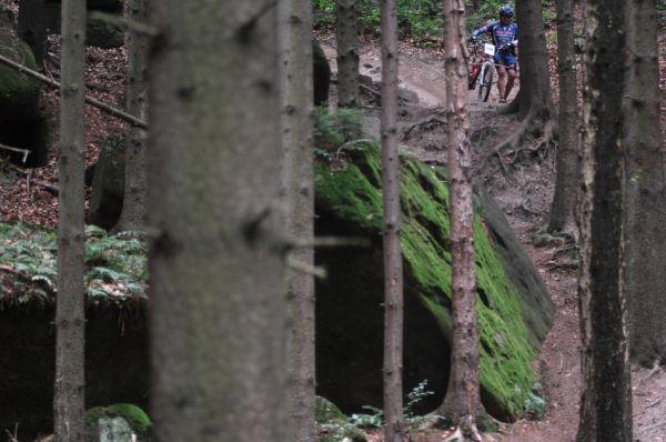 Mistrovstv� �R v MTB maratonu - Specialized Rallye Sudety '09: Hv�zda