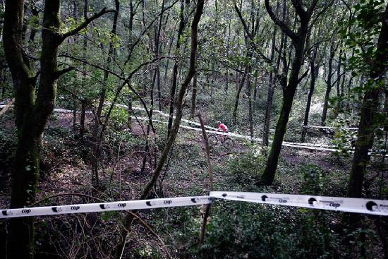 lesní xc závod