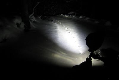 noční trénink na Šumavě