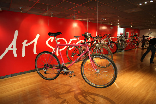 Specialized Factory