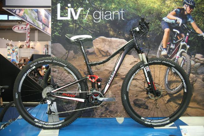 Giant 2013