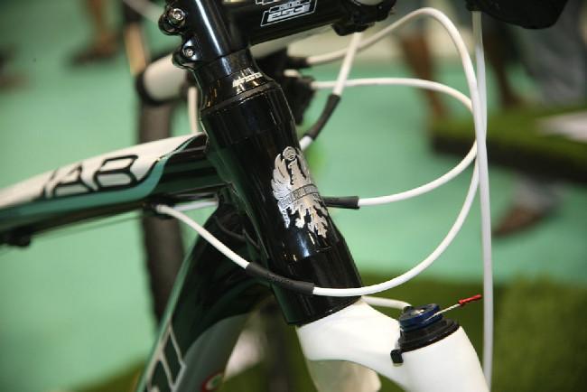 Bianchi 2013