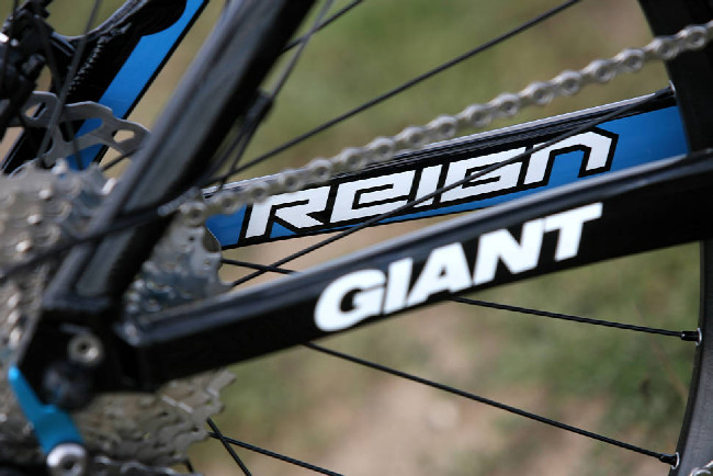 Giant Reign 1