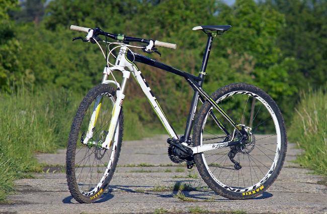 GT Zaskar 29 Expert Carbon