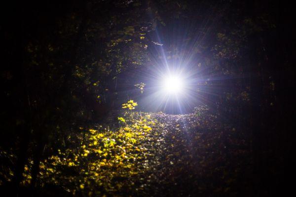 noční podzim