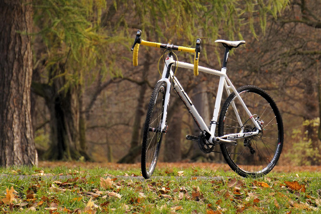 Superior XP Cyclocross Elite Disc