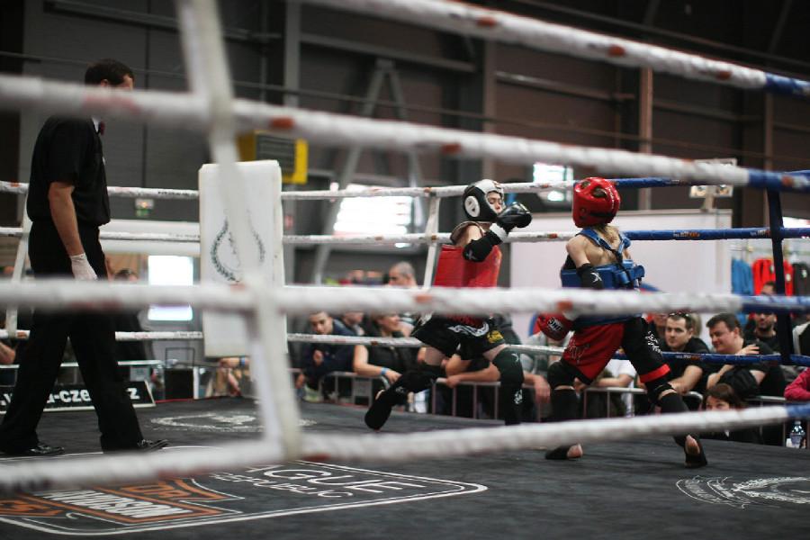 Zápasy v ringu od nejmladších kategorií