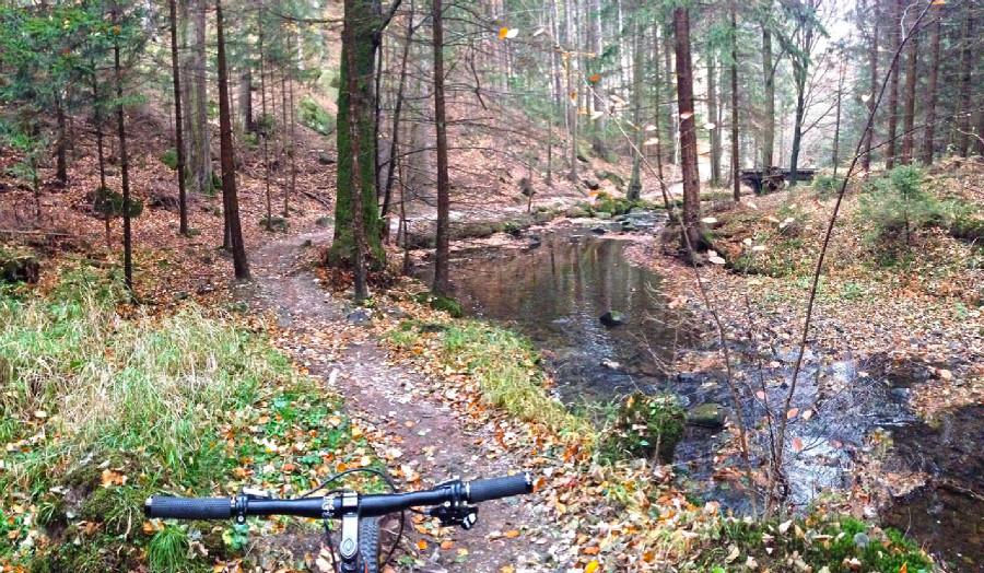 Rychleby - podzim 2015 - údolí Černého potoka