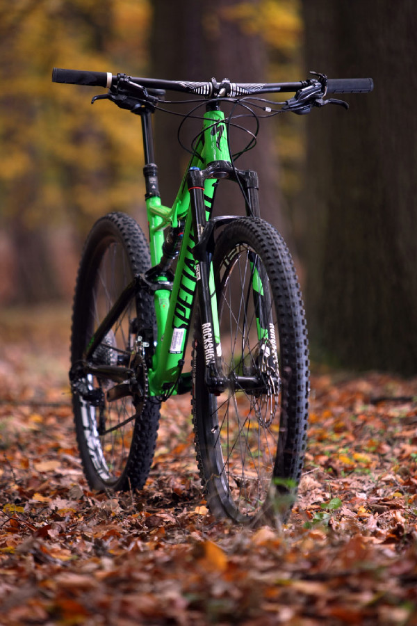 Specialized SJ FSR Comp 29