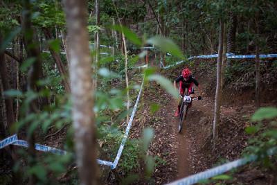 Howard Grotts se proplétá džunglí