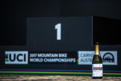 Mistrovství světa DHI 2017
