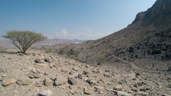 Některé traily v Hatta MTB Trail Centre nabízí slušnou flow