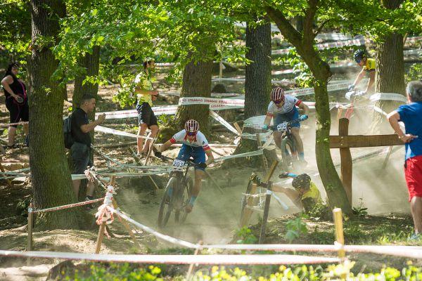 Honsa a Bedrník na kole, Schierl na zemi