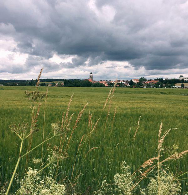 Gravel Blinduro 2018 - Slavonice z trasy