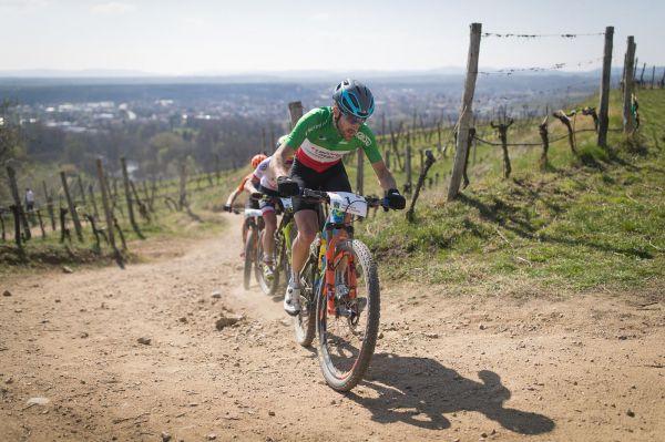 Langenlois 2019 - Gerhard Kerschbaumer