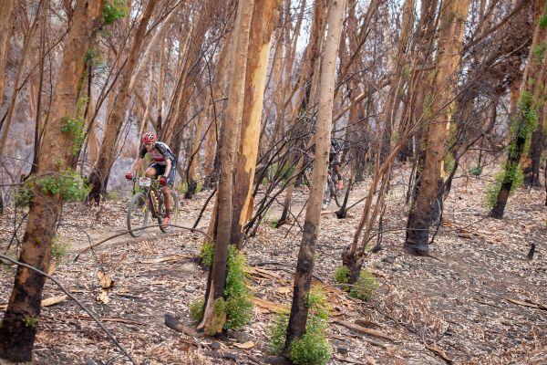 Cape Epic 2019 - Jára v nedávno spáleném lese