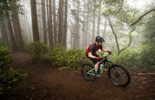Marin Rift Zone Carbon 2020
