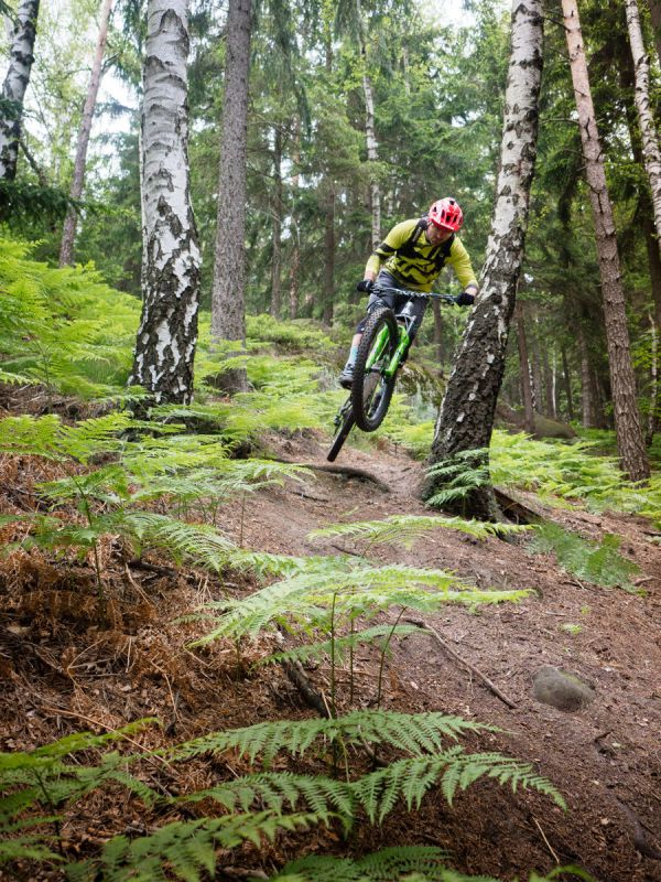 Michal Prokop - H.O.M.E. Trails - Center