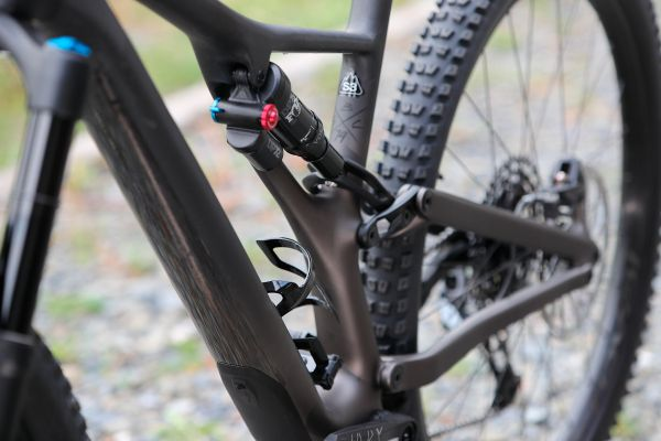Stumpjumper EVO Comp Carbon 29