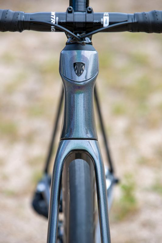 Trek Domane SLR eTap Project One