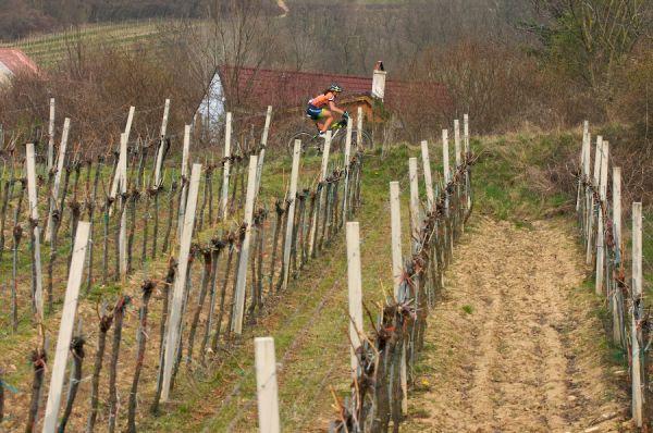 Kamptal-Klassik-Trophy, 1.4.2007, Langenlois/AUT - biking ve vinicích